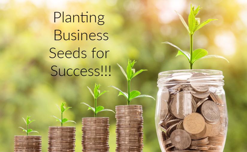 Business is SeedPlanting